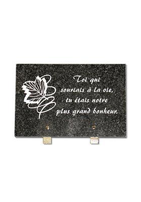 Plaque granit 20x30 cm a68div3